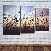 """Модульна картина """"Восход над лугами"""", фото 1"""