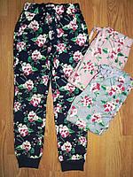 Спортивные брюки утепленные на девочку оптом, Glo-story, 98-128 рр