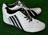 Кроссовки мужские Adidas Sport OK-7057, фото 1