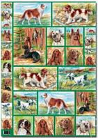 Карта декупажная Собаки 50х70см Maimeri 002