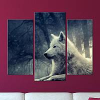 "Модульная картина ""Волк"", фото 1"