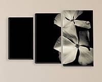 """Модульная картина """"Белые цветы"""", фото 1"""