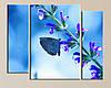 Модульна картина Метелик на квітці