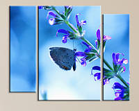 Модульная картина Бабочка на цветке, фото 1