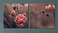 """Модульна картина """"Троянда"""", фото 1"""