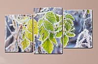 """Модульная картина """"Листья в инее"""", фото 1"""