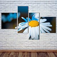 """Модульна картина """"Білі гербери"""", фото 1"""