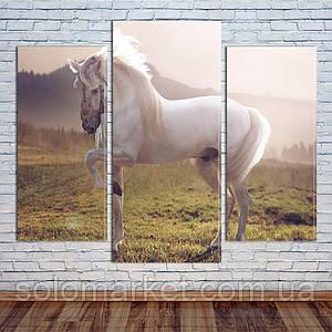 """Модульная картина """"Белая лошадь"""""""