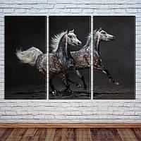 """Модульная картина """"Дикие лошади"""", фото 1"""