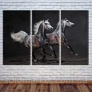 """Модульная картина """"Дикие лошади"""""""