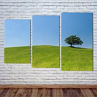 "Модульна картина ""Зелені луки"", фото 1"