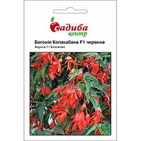 Семена Бегония ампельная боливийская Копакабана F1,  5 семян Сerny