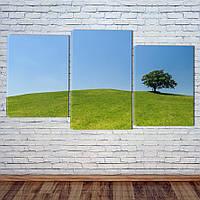 """Модульная картина """"Зеленые луга"""", фото 1"""