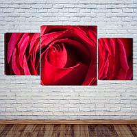 "Модульная картина ""Роза"", фото 1"