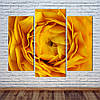 "Модульная картина ""Желтая Роза"""