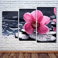 """Модульная картина """"Орхидея"""", фото 1"""