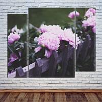 """Модульная картина """"Розовые пионы"""", фото 1"""
