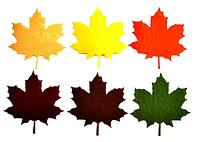 """Фетровый декор """"Листья клена"""", 9 см. 6 шт/уп, микс"""