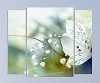 """Модульная картина """"Цветы"""", фото 1"""