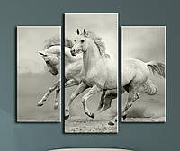 """Модульная картина """"Свободные лошади"""", фото 1"""