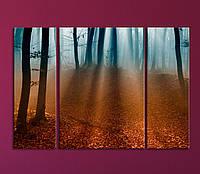 """Модульная картина """"Утренний лес"""", фото 1"""