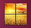 """Модульна картина """"Захід сонця над полями"""""""