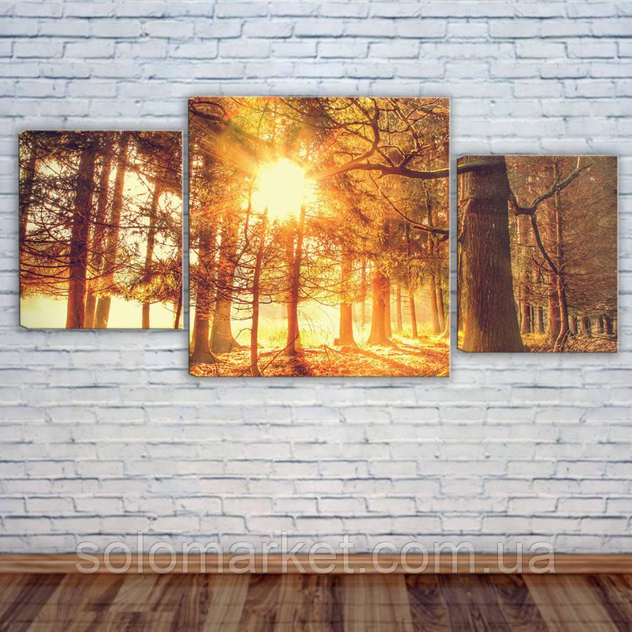 """Модульна картина """"Захід сонця в лісі"""""""
