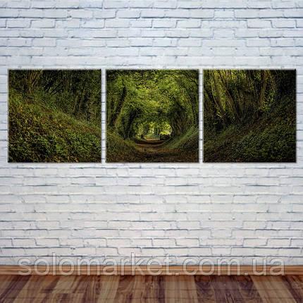 """Модульна картина """"Лісова стежка"""", фото 2"""