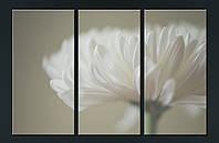 """Модульна картина """"Білі пелюстки"""", фото 1"""