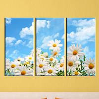 """Модульная картина """"Ромашки в поле"""", фото 1"""