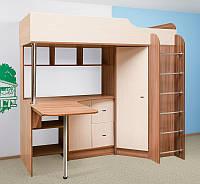 Детская кровать чердак ДМ 91 ( ДСП 16 мм, шкаф,лестница,стол, полки)
