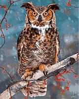 Картины по номерам 40×50 см. Большая рогатая сова
