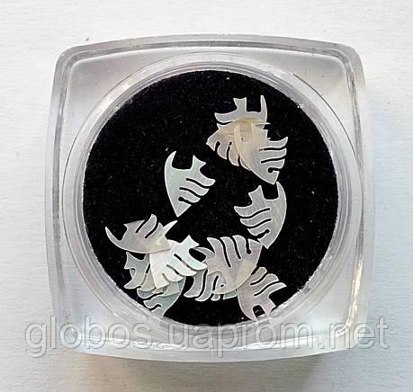 Перламутровые фигурки, ракушка, для аквариумного дизайна ногтей RENEE  IM 09-01, фото 2