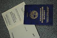 Оформление международного ветеринарного паспорта