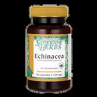 Эхинацея, Echinacea (Standardized), Swanson, 200 мг, 60 капсул