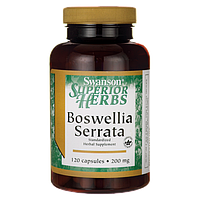 Босвеллия, Boswellia Serrata (Standardized), Swanson, 200 мг, 120 капсул