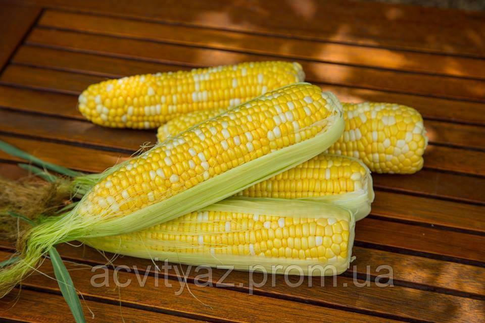 Семена сладкой кукурузы РАКЕЛЬ F1, 50 000 семян