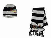 Детский Комплект: шапка, шарф для мальчика