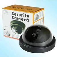 Муляж купольной камеры