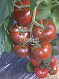 Семена томата БРОНСОН F1, 250 семян, фото 2