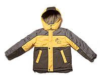 Детская демисезонная куртка для мальчка Happy knopa. рр. 98-134