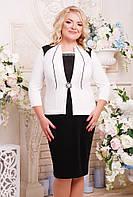 Женское красивое платье Агра с имитацией жакета, цвет черный с белым размер 52-62 / большие размеры