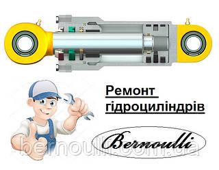 Ремонт гідроциліндрів 0981728111