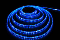 Светодиодная лента 2835(3528) 120 диодов Blue IP65 LKLed