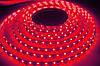 LED-лента 3528/60/Red/IP20 352860R20 LKLed