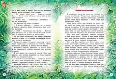 Большая книга рассказов  Бианки В, фото 3