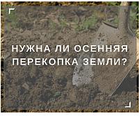 Нужна ли осенняя перекопка земли на огороде?
