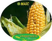 Посадочные семена кукурузы гибрид АТТРАКТ ФАО 230