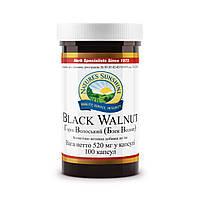 Противопаразитарный Грецкий Чёрный Орех (BLACK WALNUT)