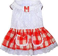 Платье для собак Dobaz Добаз, Toscana красный, фото 2